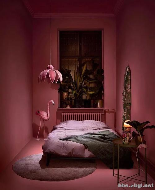 女生公寓的优雅高级配色,必须pick它——干枯玫瑰色-3.jpg