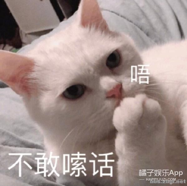 盘点历届金鹰女神造型!赵丽颖当之无愧天花板,王珞丹翻车最夸张-18.jpg