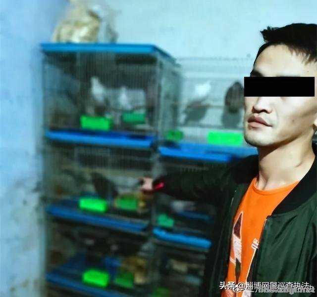 兰州警方摧毁一利用网络非法销售珍贵、濒危野生动物犯罪团伙!-5.jpg
