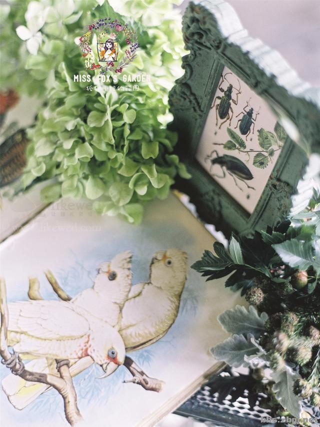 花园小清新婚礼,就像是在自家小院一样舒适惬意!-6.jpg